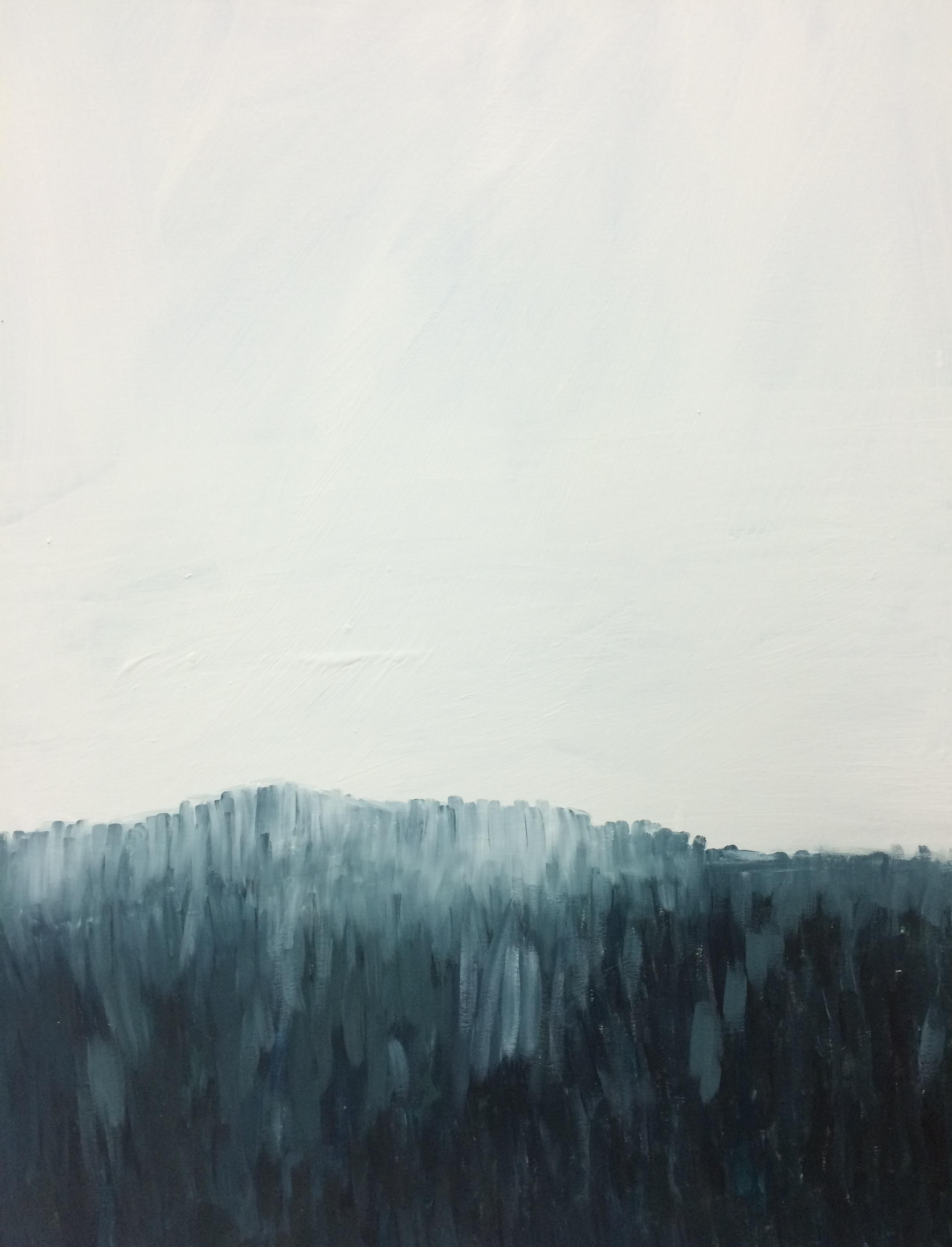skog3 (kopia)